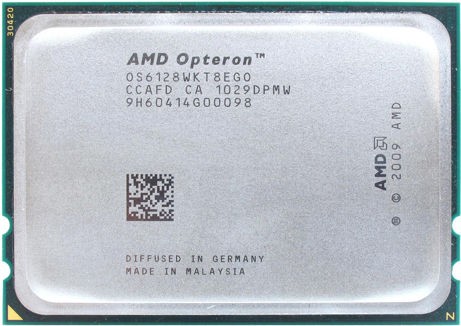 Processor Amd Opteron 6100 Series Opteron 6128 Kupit Cena I Harakteristiki Otzyvy