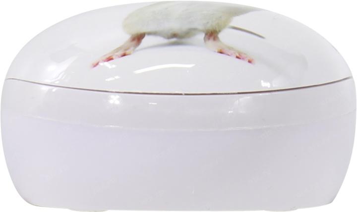 Мышь CBR Capture USB + коврик